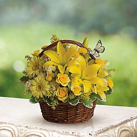 Brant Florist, Burlington, Burlington Florists