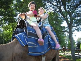 Kids riding a camel, Kitchener Ontario, Waterloo Ontario, family fun