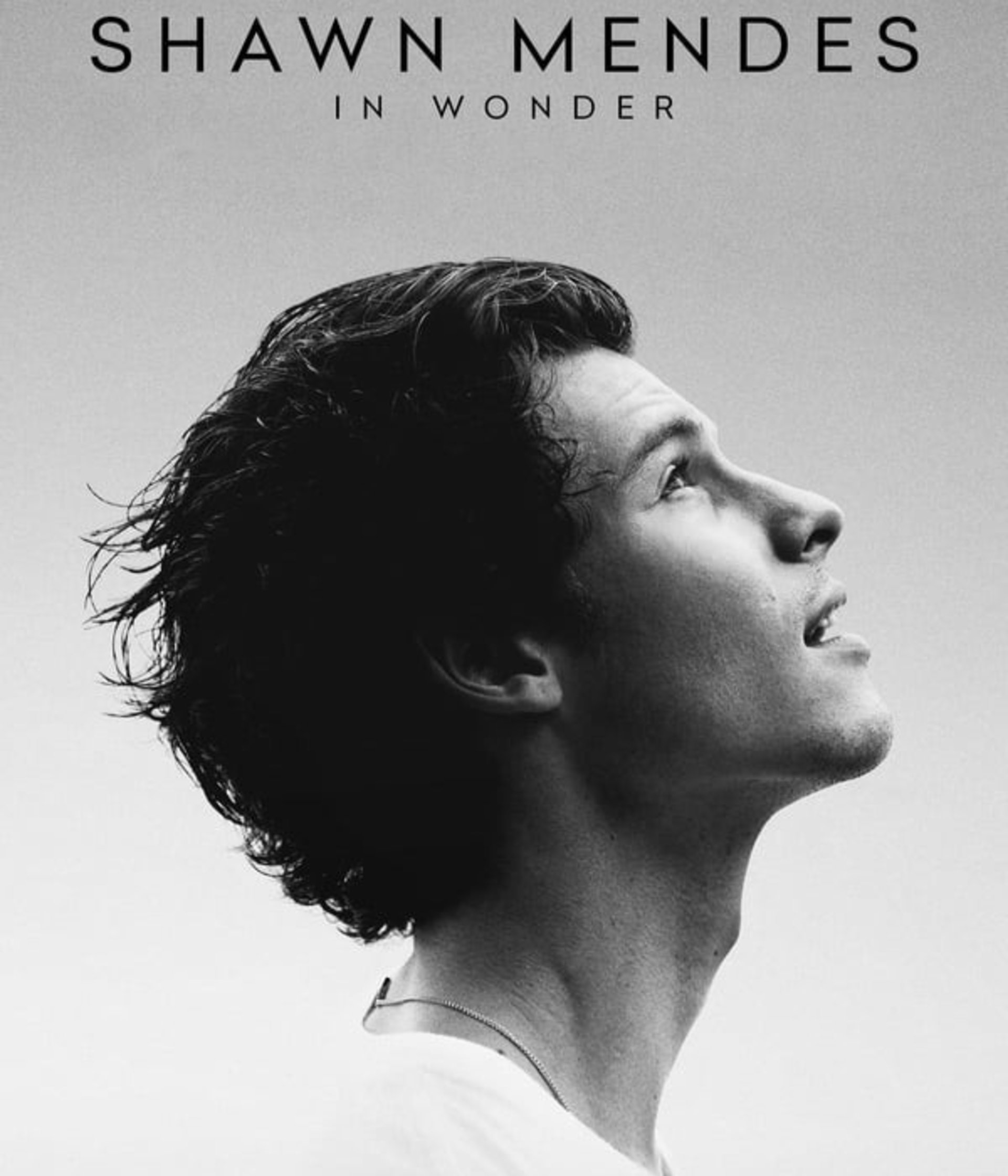 Nonton Film Shawn Mendes: In Wonder (2020) Full Movie Sub ...