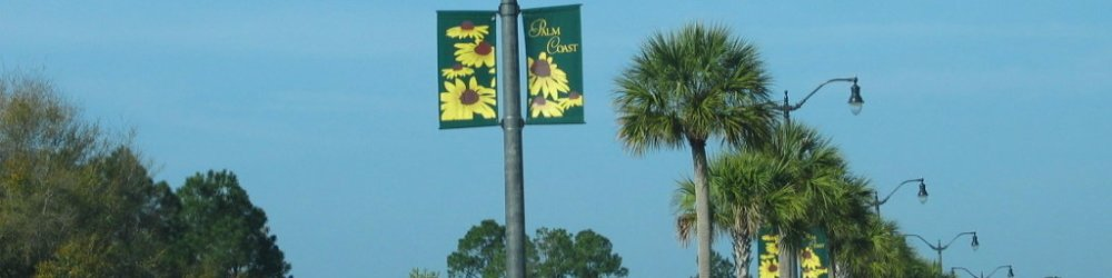 Celebrating What Makes Palm Coast Unique through Smart Community Narratives