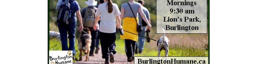 Burlington Humane Dog Walking Club