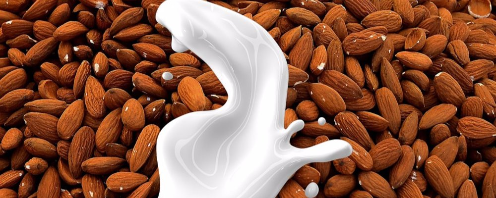 The most popular Almond Milk