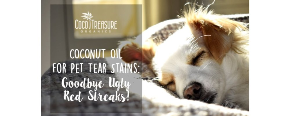 Coconut Oil for Pet Tear Stains: Goodbye Ugly Red Streaks!
