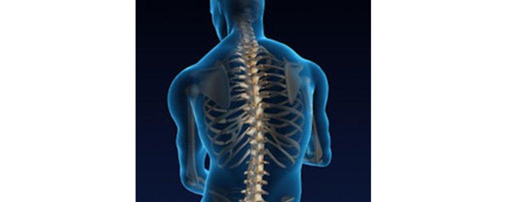 Spine Hygiene