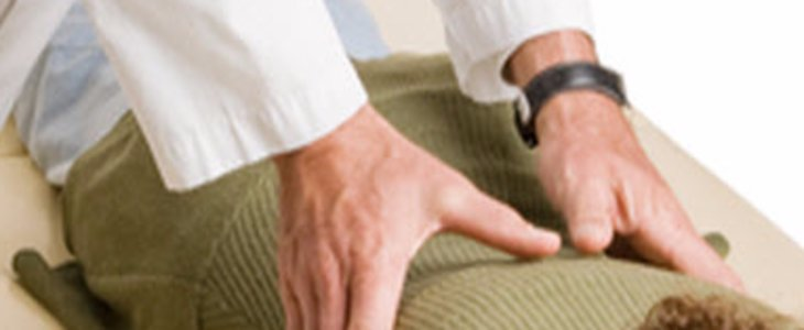 Physiotherapy & Chiropractors In Guelph Region