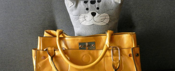Happy in a Handbag