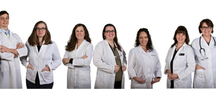 Animal Hospital of Cambridge:  Who we are, What we do