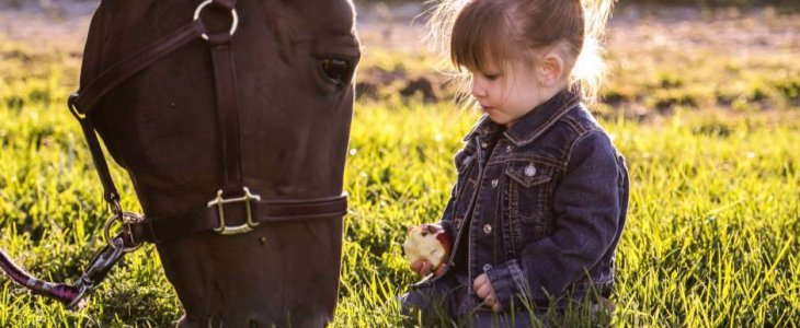 5 Life Skills A Child Can Learn From A Horse