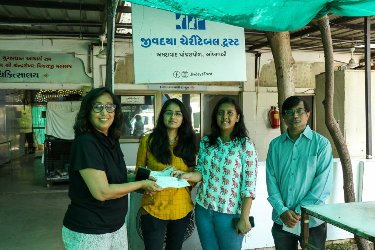 V3cube donate jivdaya charitable trust