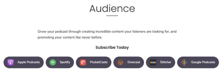 listen live buttons, spotify, google, apple podcasts