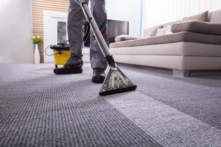 Lakeshore Cleaning and Restoration, Residential Carpet Cleaning, Commercial Carpet Cleaning
