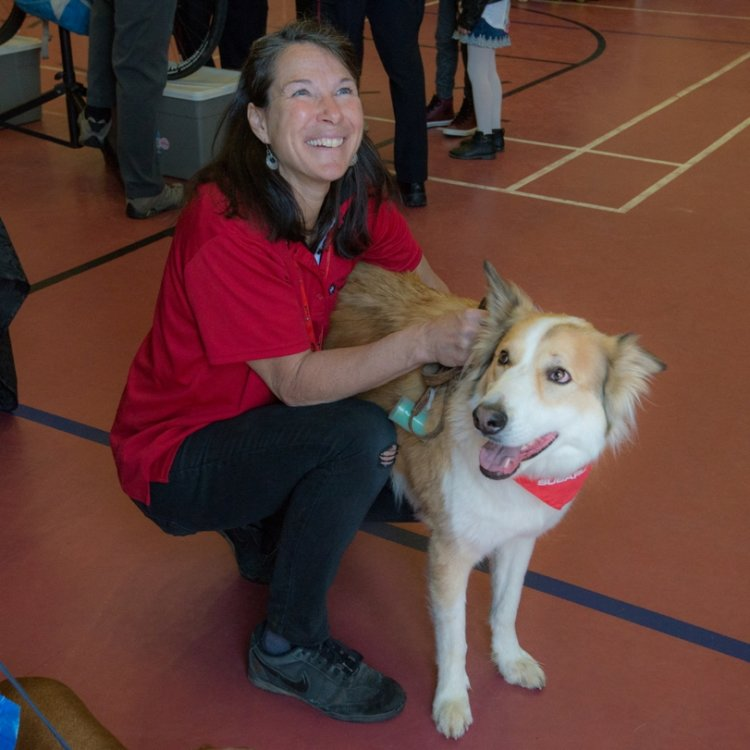Therapy Dog St John Ambulance children volunteer St John Ambulance KW