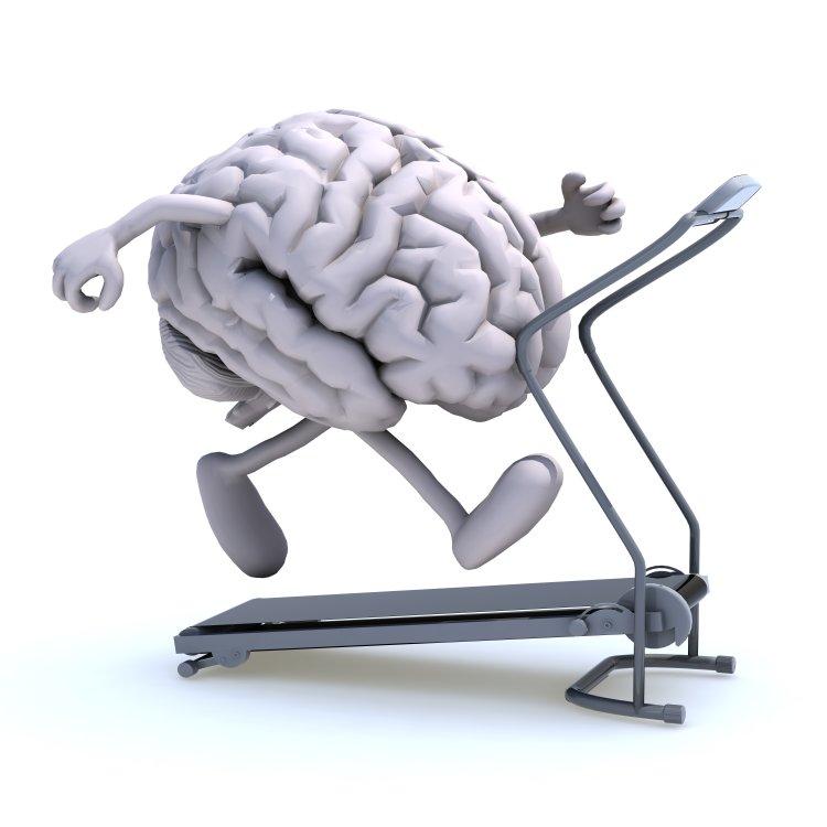Train, Brain, Mindfulness, Exercise, Brain exercises