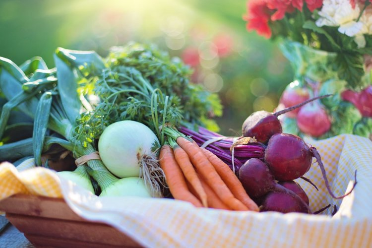 healthy, local, vegetables, fresh, flavour