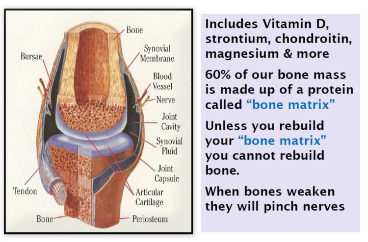 bone biology, weak bones, bone matrix, calcium, vitamin D, bone, pain relief