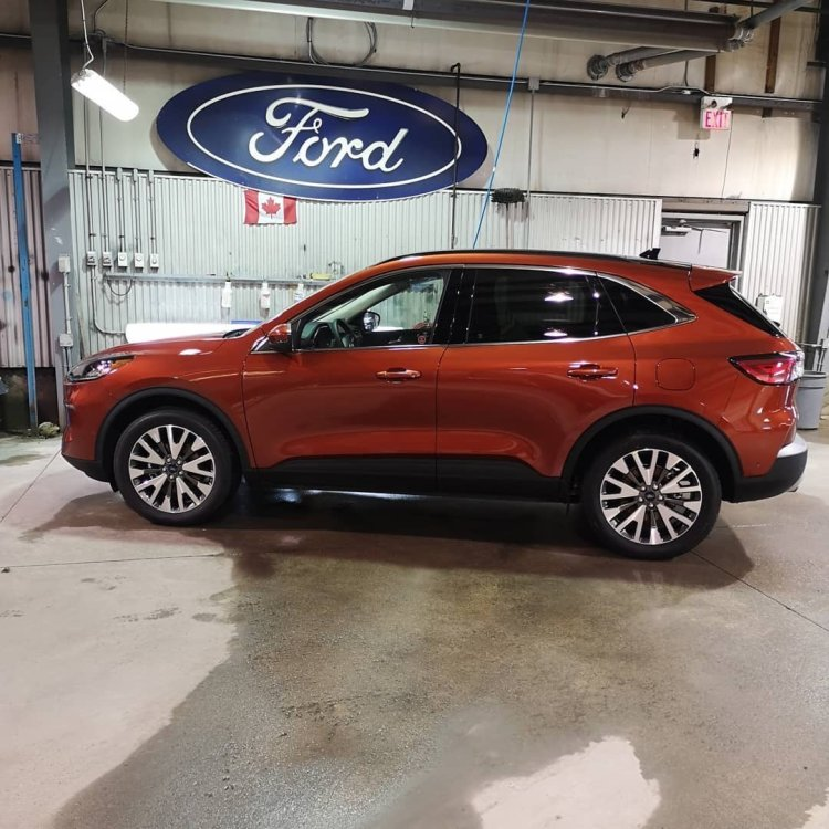 Ford, Escape, Hybrid, Guelph, Wayne Pitman Ford, Opticoat Pro Plus