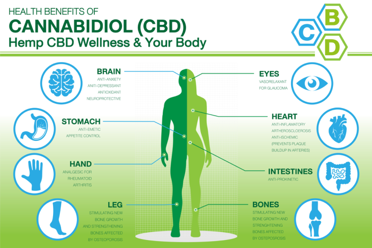 CBD health hemp wellness cannabidiol health benefits
