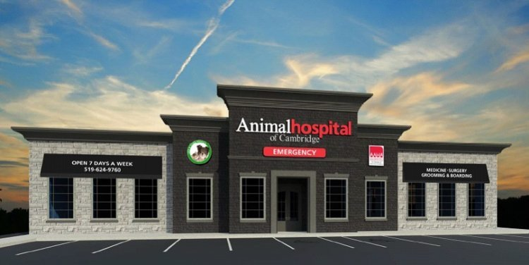Animal Hospital of Cambridge, veterinary clinic, vets