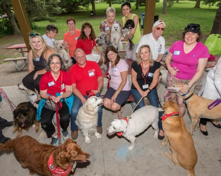 Therapy Dog Volunteer Teams St John Ambulance Kitchener Waterloo