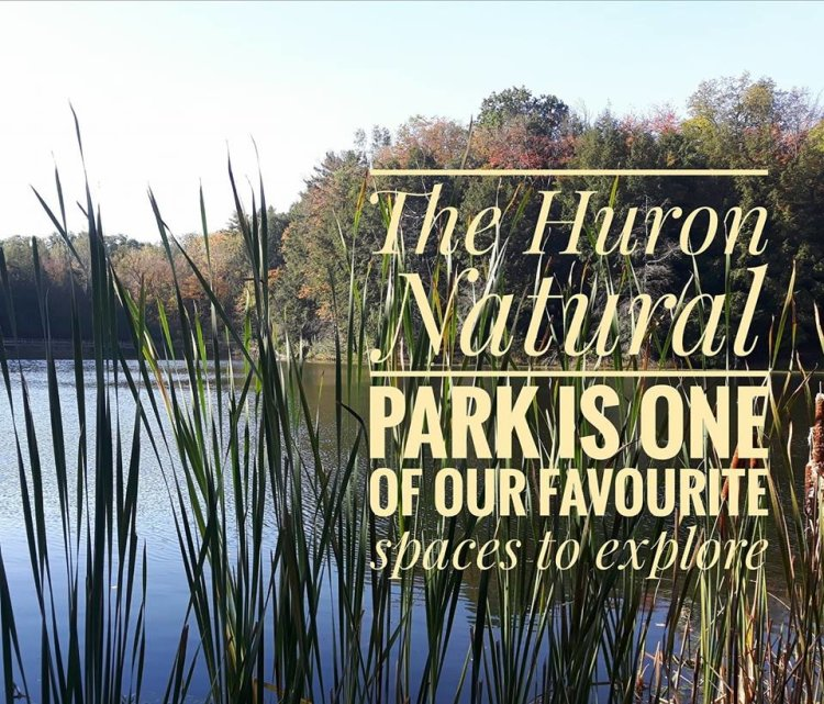 Huron, Nature, PArk, Kitchener, Ontario