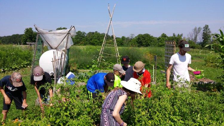 kids, garden, sustainability, education