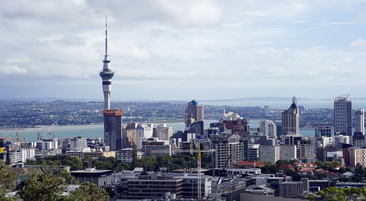 Amazing things to do in Auckland