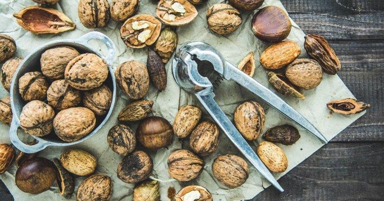 walnuts, brain food, 10 favorite brain food, healthy life