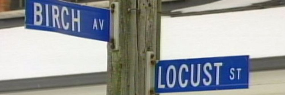 What's on Locust St. Burlington, ON