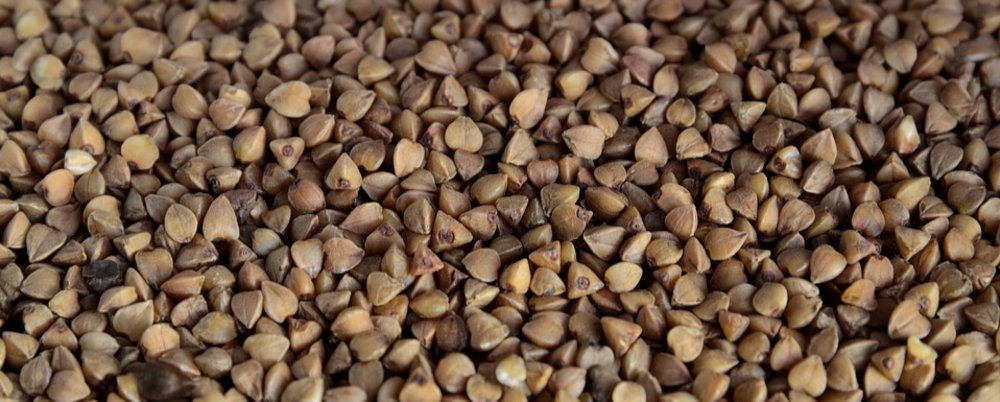 Buckwheat flour Profile Study