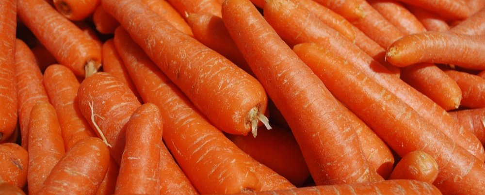 Carrots: Your Juicer's Best Friend!