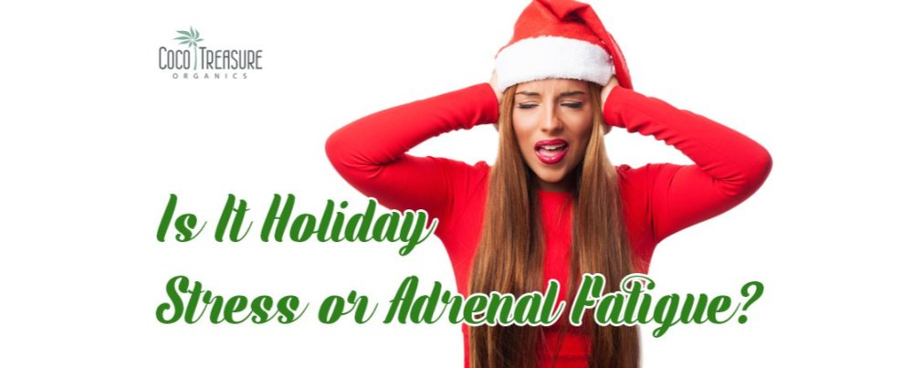 Is It Holiday Stress or Adrenal Fatigue?