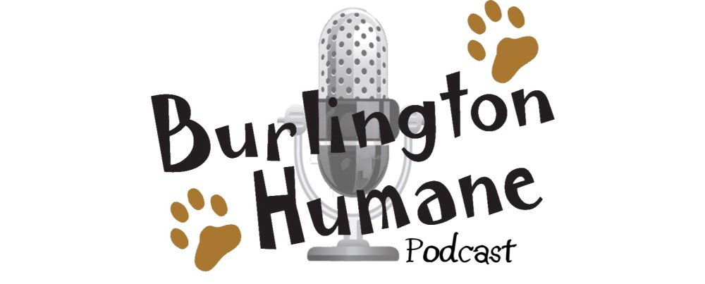 "Episode 10 of ""Burlington Humane"" Podcast Available"