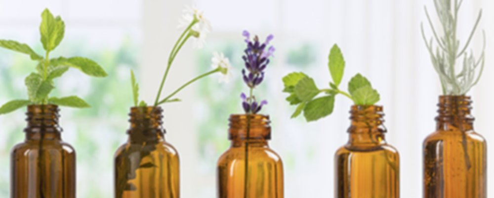 Our Five Favourite Essential Oils