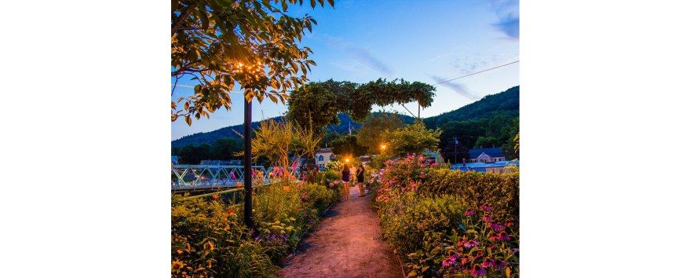 Unforeseen Memorable Moments: A Bridge of Flowers