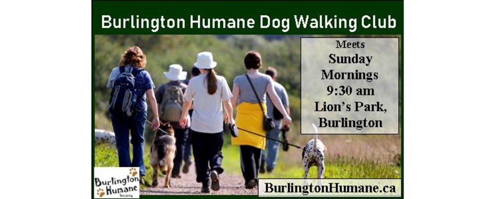 Burlington Humane Dog Walking Club