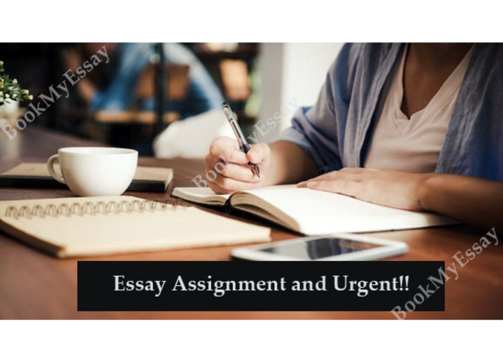 Tips To Handle Essay Assignments on An Urgent Basis