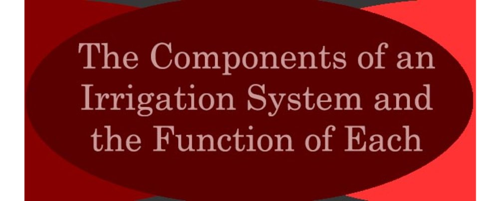 The Components of an Irrigation System and the Function of Each