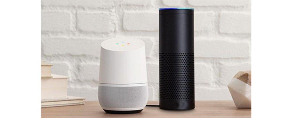 Echo Alexa support number