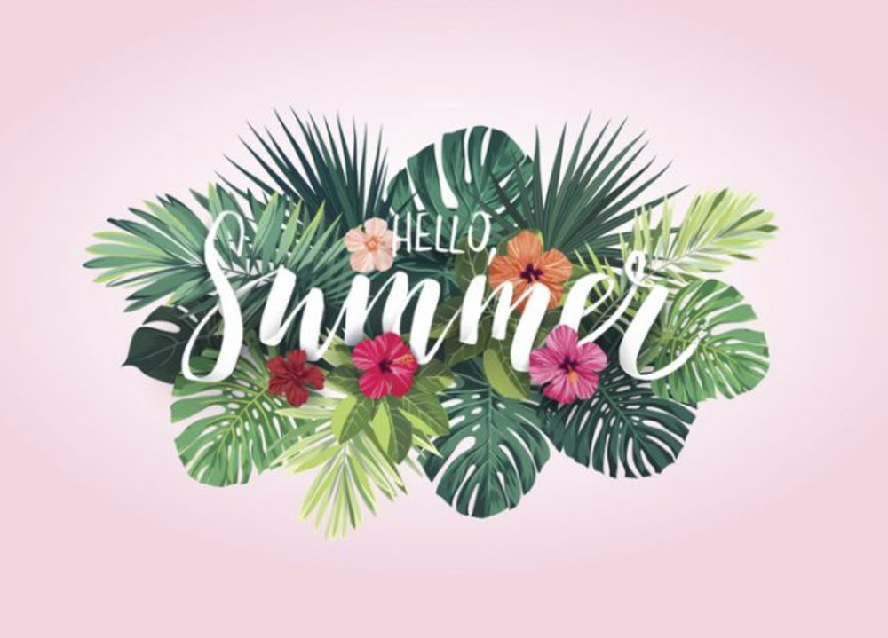Summer Flowers bring Joy to your Home or Office