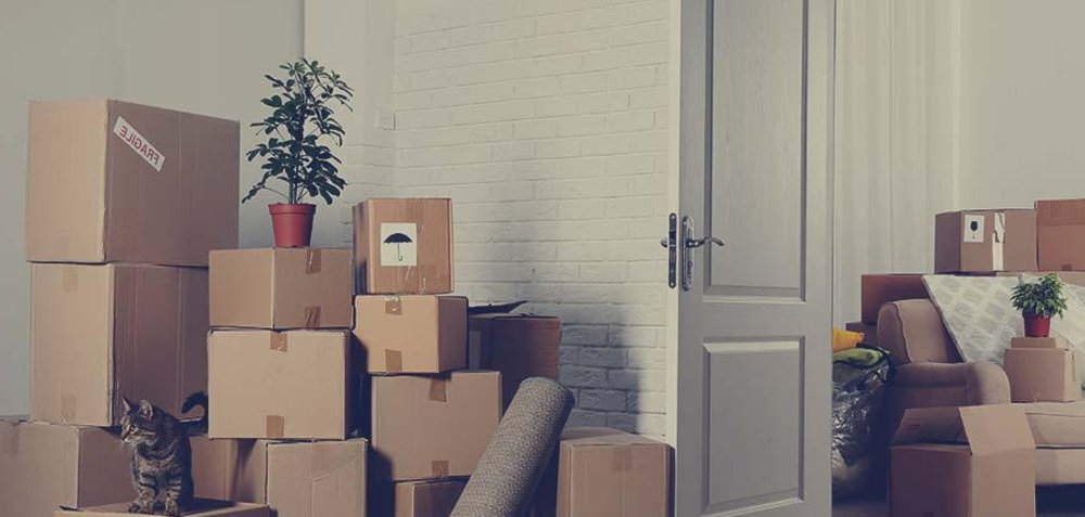 The roles of the packers and movers in moving your home