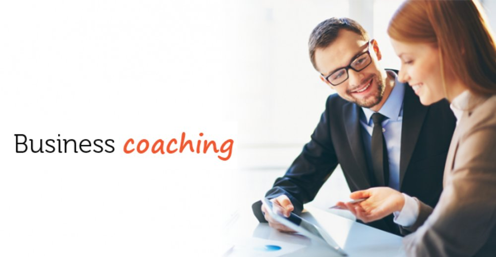 How Professional Business Coach Helps