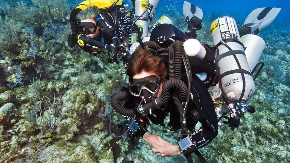 Snorkeling In Coral Island Pattaya - Amazing Underwater to Give You a Peek in th