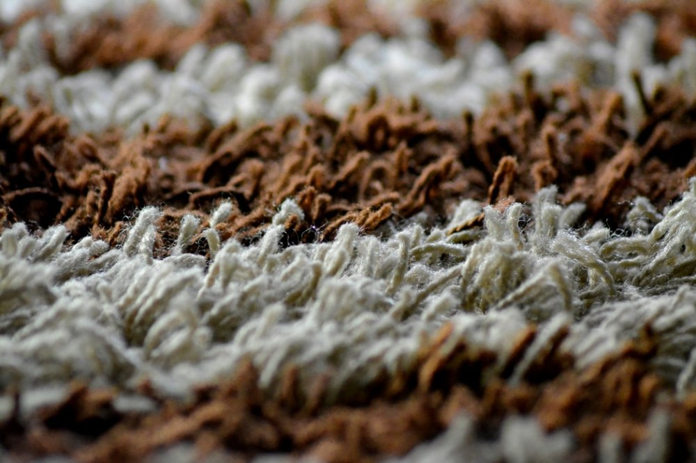 Everything You Wanted To Know About Wool Carpets