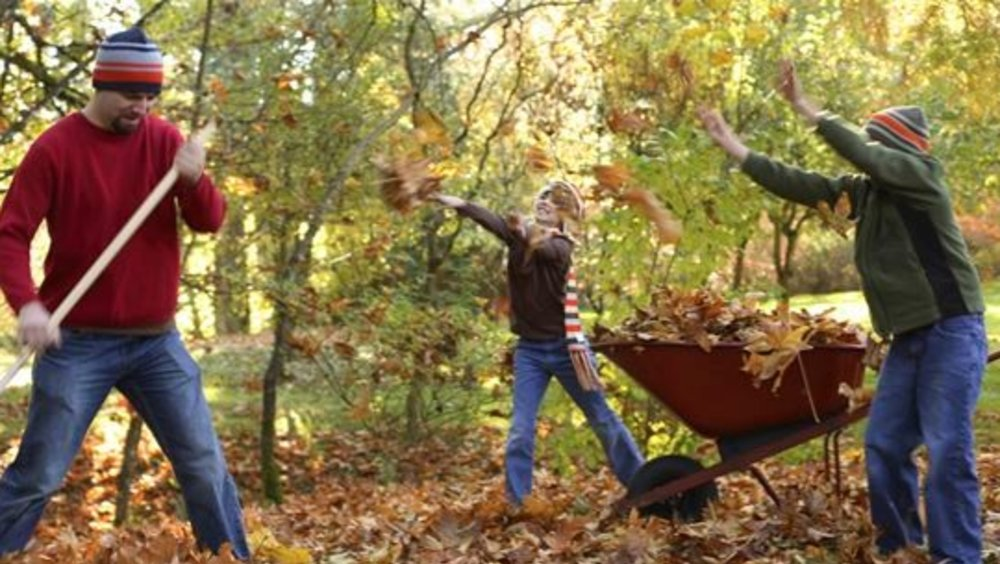 4 Tips to protect your back raking leaves