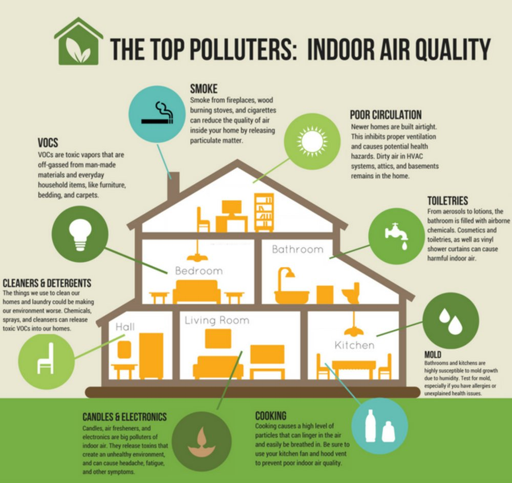 7 Ways To Improve Indoor Air Quality