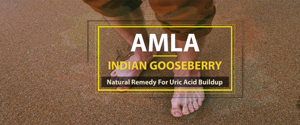 Amla (Indian Gooseberry): Natural Remedy For Uric Acid Buildup