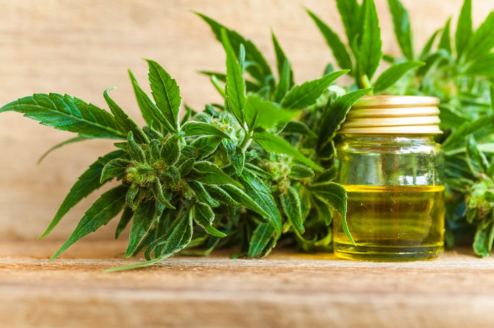 What is CBD Oil and How It Became One of the Fastest Growing Brand?