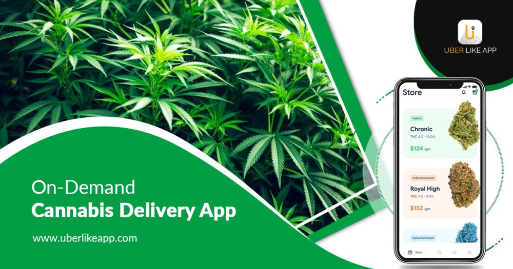 The ultimate guide to step into the cannabis delivery business.