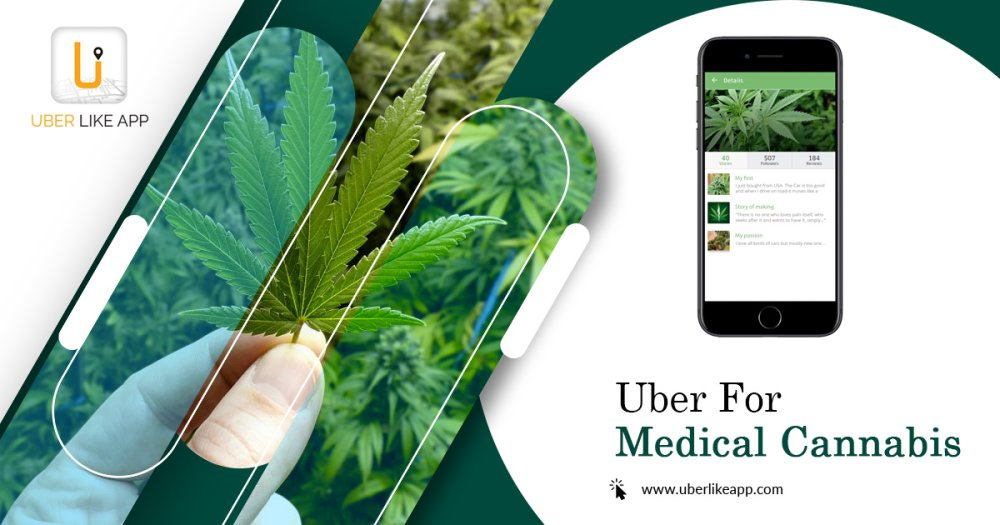 How do delivery medical marijuana services work
