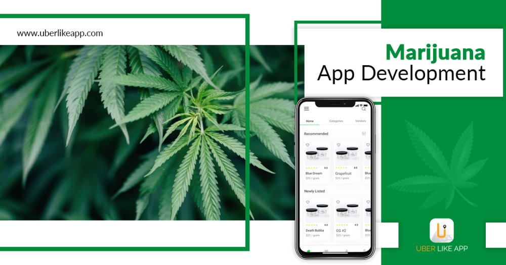 Basic features of an on-demand cannabis delivery app and how to improve it.